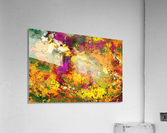 Looking for the impossible  Acrylic Print