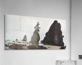 Shi Shi Beach  Acrylic Print
