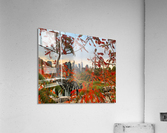 Autumn in New York   Acrylic Print