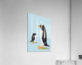 Gento Penguin  Acrylic Print