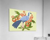 The Sarus Crane  Acrylic Print