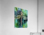 Louisiana Dragonfly  Acrylic Print