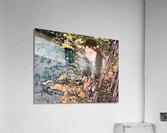 FAIRY AND THE LAKE  Art-Photo 1-4   Acrylic Print