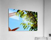 Light Up  Acrylic Print