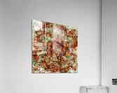 Submerged leaves  Acrylic Print