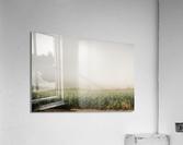 Summer Dust Cornfield  Acrylic Print