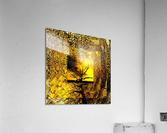 Tree Layers 7  Acrylic Print