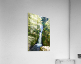 Falls in The Gorge 2   Columbia River Oregon  Acrylic Print