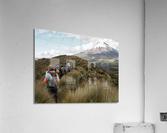 2CAEEB24 3011 46FC 848B 1952A02E0E6D 1 102 a  Acrylic Print