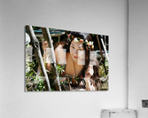 SHOUTING OUT LOUD FOR THE MISSION  Collection 2-6  Acrylic Print