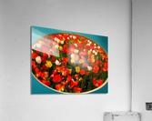 Parade of Tulips  Acrylic Print