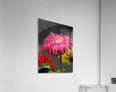 El Arte Del Amor  Acrylic Print