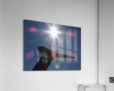 DSCN2528  Acrylic Print