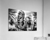 africa 2  Acrylic Print