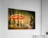 Fairy Ring  Acrylic Print