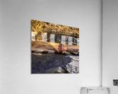 8A0EA682 A5EC 4E2C 86D4 1447338CF73D  Acrylic Print