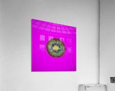 Kiwi Redux II  Acrylic Print