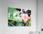 Dragonfly And Lily  Acrylic Print