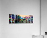 Into the Wild  Acrylic Print