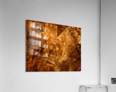 ABSTRACT-1008 Sociability  Acrylic Print