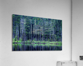Forest by the Lake  Acrylic Print
