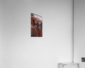 Belle vieille carcasse - Beautiful Old Carcass  Acrylic Print