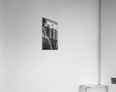 Belle vieille carcasse - Beautiful Old Carcass N&B  Acrylic Print