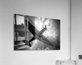 Spitfire Angel Limited Edition 50 Prints only  Acrylic Print