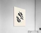 Black Twigs  Acrylic Print