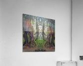Grandmother Tree  Acrylic Print