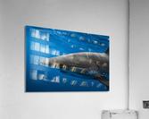 Hooked  Acrylic Print