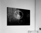 Moonlight Dance   Acrylic Print