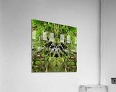 Baby Yoda  Acrylic Print