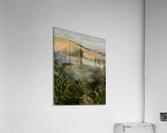 Arkansas field  Acrylic Print