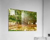 Waikiki Snapshot in Time 4 of 4  Acrylic Print
