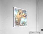 Curious Bear   Acrylic Print