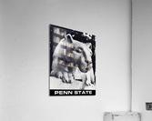 1988 Penn State Nittany Lion Shrine Art  Acrylic Print