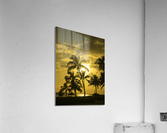 Palms and Hulu Thatched Tiki Umbrellas in the Golden Light of Sunset  Acrylic Print