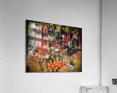 3D0B5468 69D2 450E BB38 1D59CE464BA7  Acrylic Print