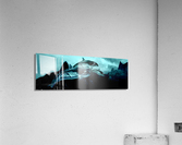 ORCAS LUNARES WIDE 3  Acrylic Print