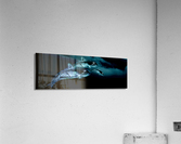 ORCAS LUNARES WIDE 8  Acrylic Print