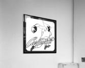 1956 Chicago Cardinals Viewfinder Slide Art  Acrylic Print