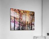 The Wanderer  Impression acrylique