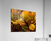 Pollens Summer Glow 2  Acrylic Print