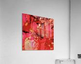 Aubepine   Acrylic Print