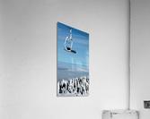 Steel Sky  Acrylic Print
