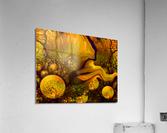 POLLENS SUMMER GLOW 6  Acrylic Print