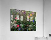 English Cottage Garden Flowers 2  Acrylic Print