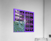Spiritual Brainwaves  Acrylic Print