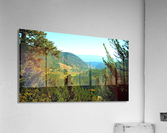 LS027  Acrylic Print